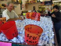 Looking for balls at Golf Ball Outlet, Hardeeville