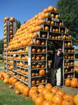 Pumpkin House at Milburn Orchards