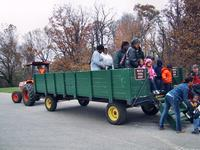 Tour group at Oxon Hill Farm