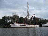 Shrimp Boats on the Darien River