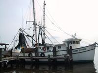 Lang\'s Marina Shrimp Boat, St Mary\'s