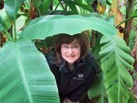 Sandra hiding at the Cape Fear Botanical Gardens