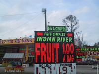 Indian River Fruit Stand - one of MANY